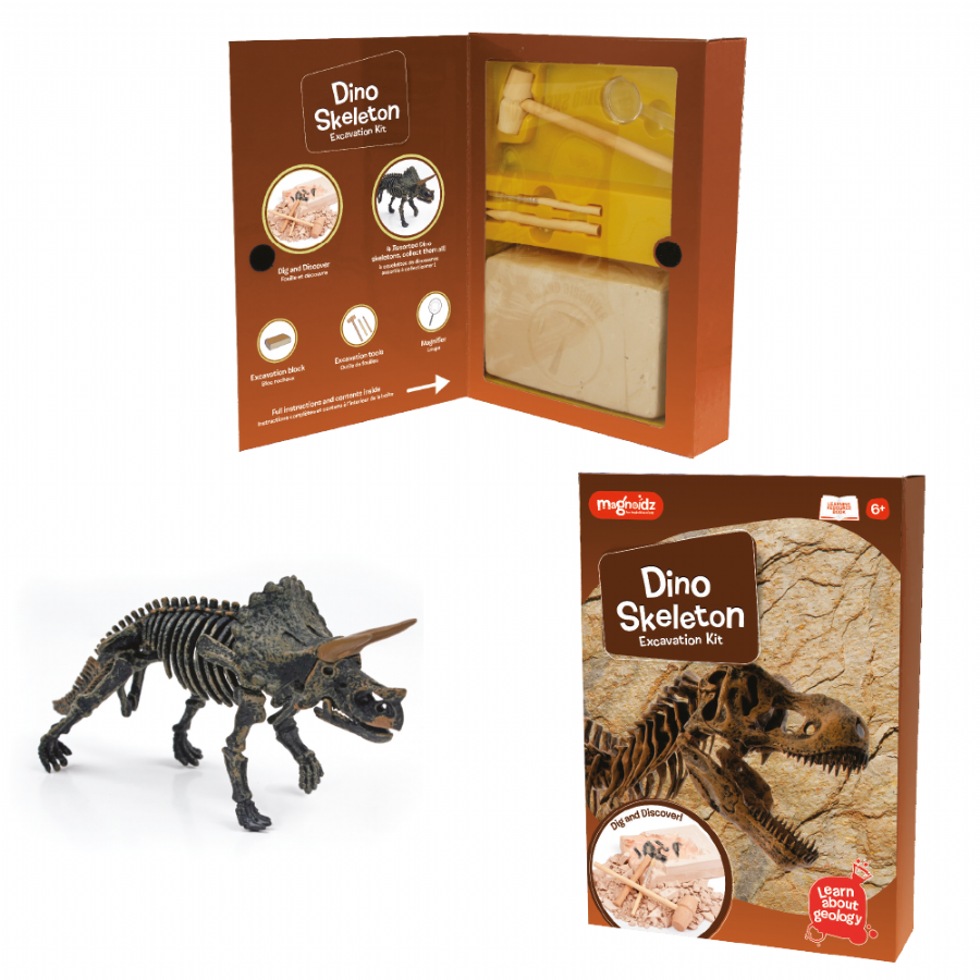 Dino Excavation Science Kit